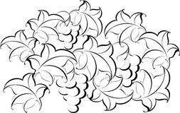 Black and white pattern from vine Stock Images