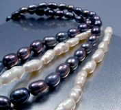 Black and white pearl. Pearl beads Royalty Free Stock Images