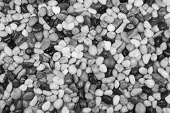 Black and white pebble stones for a background. Stock Photography
