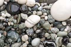 Black and white pebbles. Background made of black and white pebbles Stock Photos