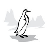 black and white penguin Royalty Free Stock Photo