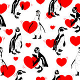 Black and white penguins with red heart. Stock Photography