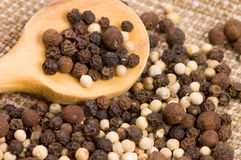 Black and white Peppercorns on a wooden spoon Stock Photo