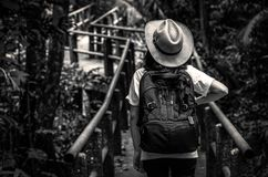 Black and white photo of Asian woman tourist with hat and backpack standing and start walking on nature trail bridge in evergreen. Forest. Alone young woman Stock Photos