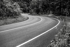 Black-white photo of asphalt road in rainforest Royalty Free Stock Photography