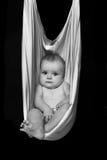 Black and white photo of Stock Photo