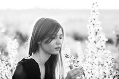 Black and white photo of beautiful girl with long, straight hair posing in the field Royalty Free Stock Photos