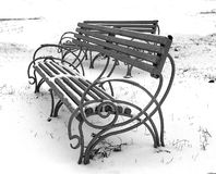 Black and White photo of benches  during winter in park Stock Images