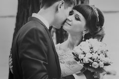 Black and white photo of bride  groom kissing on the background  trees Stock Image