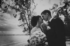 Black and white photo of bride  groom standing  kissing in the background  the nature Stock Photography