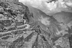 Black & White photo of buildings in Machu Picchu. A view upwards through the Machu Picchu buildings Royalty Free Stock Image