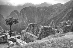 Black & White photo of buildings in Machu Picchu. A view upwards through the Machu Picchu buildings Stock Images