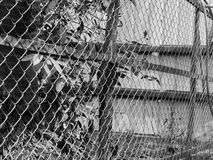 BLACK AND WHITE PHOTO OF CHAIN-LINK FENCE Stock Photos