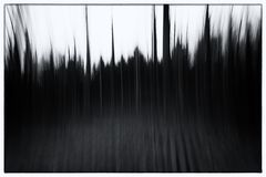 A black and white photo of a conceptual photo using slow shutter speed of trees in a forest showing leaves and the path Royalty Free Stock Photo