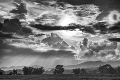Black and white photo countryside. Countryside landscape in Thailand black & white Royalty Free Stock Photography