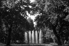 Black and white photo of the fountain among the trees in the Republic of Kyrgyzstan. Black and white photo of the fountain surrounded by trees in the Republic of Stock Image