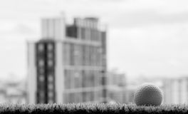Black and white photo of golf ball on grass with building backgr Stock Photos