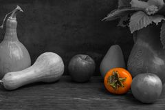 Black and white photo of harvest of apples, pear, rowan and pump. Kins with color detail as persimmon on wooden desk. Mockup for seasonal offers and holiday post Stock Photo