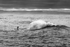 Black and white photo of a man on the waves of the sea