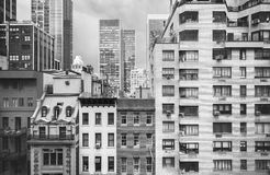 Black and white photo of New York buildings, USA royalty free stock photo