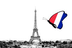 Black and white photo of Paris panorama with a view of the Eiffel Tower with butterfly around in the colors of the national flag. Of France. Isolated on white stock image