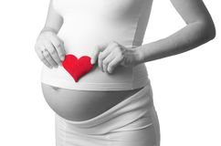 Black and white photo with red symbol - pregnant woman put a toy heart to his stomach. Isolated on white background Royalty Free Stock Photography