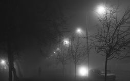 A black and white photo of a street at night with street lights shining behind the trees and silhouette of a person. On a foggy night Royalty Free Stock Photos