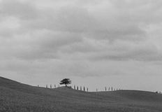 Black and white photo of Tuscany Stock Photography