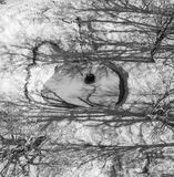 Black white photo of wellspring in the woods. Royalty Free Stock Image