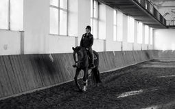 Black and white photo of woman riding horse at indoor manege Royalty Free Stock Photos