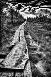 Black and white photo of wooden footbridge and pond in Kemeri Na stock image