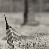 Black and white photo of a worn out american flag. Tattered american flag taken at and old cemetary with monument in background. shallow field of fiew with focus Royalty Free Stock Image