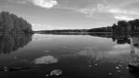 Black-and-white photograph. A beautiful large tranquil lake. It reflects the forest and clouds. Visible pier and lilies Royalty Free Stock Image