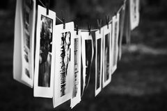 Black and white photographs royalty free stock image