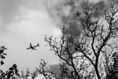 Black-and-White Photography of Airplane stock photography