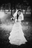 Black White Photography Beautiful Young Bride Stand On Background Forest Stock Image