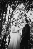 Black white photography happy couple bride and groom embracing they stand in a forest Royalty Free Stock Photography