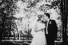 Black white photography happy couple bride and groom embracing they stand in a forest Royalty Free Stock Photos