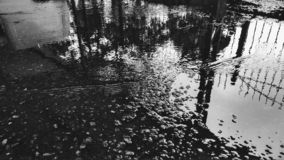 Black and white photography of a water reflection royalty free stock photo