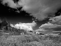 Black & White Picture of Cloud & Nature Royalty Free Stock Photos