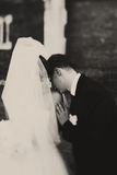 A black and white picture of a groom kissing bride`s shoulder Stock Photos