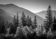 Black and white picture of mountains Royalty Free Stock Photography