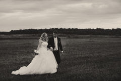 A black and white picture of a wedding couple walking on the fie Royalty Free Stock Photo