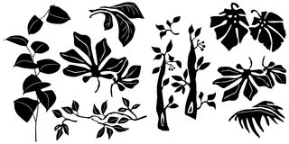 Black and white Plants silhouettes collection for designers. 2d vector Royalty Free Stock Photo