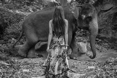 Black&white portrait of an alluring elephant tamer. Black&white photo of an alluring elephant tamer royalty free stock photo