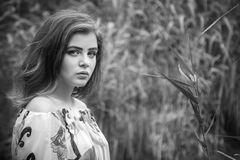 Black and white portrait of beautiful young sad brunette woman. Standing in a forest Stock Images