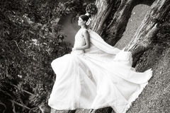 Black and white Portrait bride Royalty Free Stock Photo