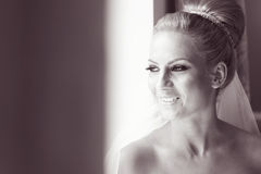 Black and white portrait of a bride Stock Photography