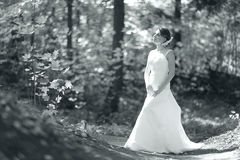 Black and white portrait of bride in sunny park Stock Photography