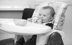 Black and white portrait of 9 months baby sitting in highchair a. Black and white portrait of 9 months old baby sitting in highchair and playing with food Stock Photos